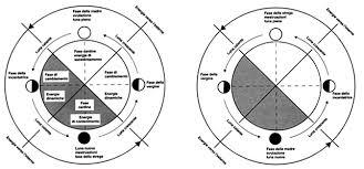 fasi della luna e mestruali